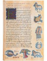 Paperblanks Astronomica Mini | Day-at-a-Time 2022 Diary (NEW) (PRE-ORDER)