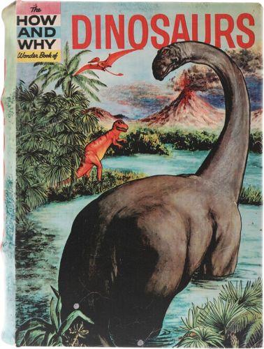 Book Box - Dinosaurs Large (NEW)