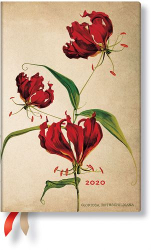 Paperblanks Gloriosa Lily Mini | Day-at-a-Time 2020 Diary (NOTE: 2020)