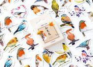 Stickers - Birds (45pcs box)
