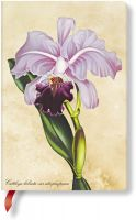Paperblanks Painted Botanicals Brazilian Orchid Mini UNLINED