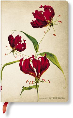 Paperblanks Painted Botanicals Gloriosa Lily Mini LINED