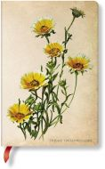Paperblanks Painted Botanicals Woodland Daisies Mini LINED