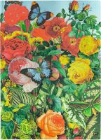 Paperblanks Flexis Butterfly Garden Midi 176pp SOFTCOVER LINED