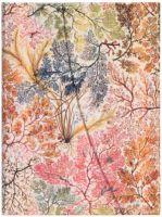 Paperblanks William Kilburn - Anemone Midi LINED (NEW).