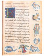 Paperblanks Flexis Astronomica Ultra 176pp SOFTCOVER LINED