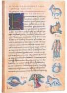 Paperblanks Flexis Astronomica Midi 176pp SOFTCOVER LINED